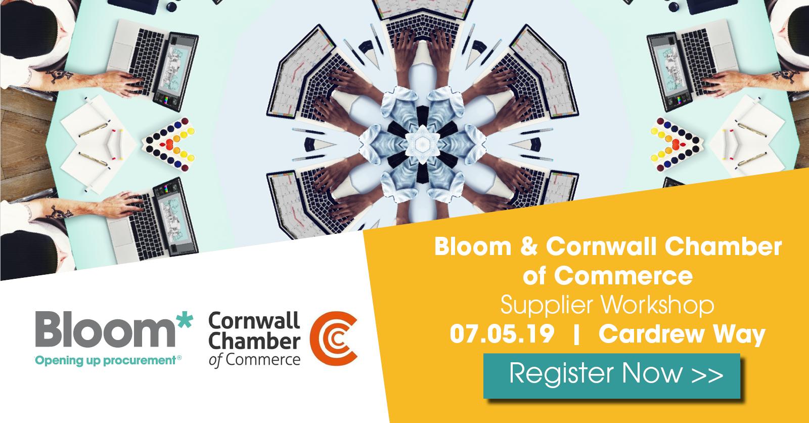 Cornwall Supplier Workshop