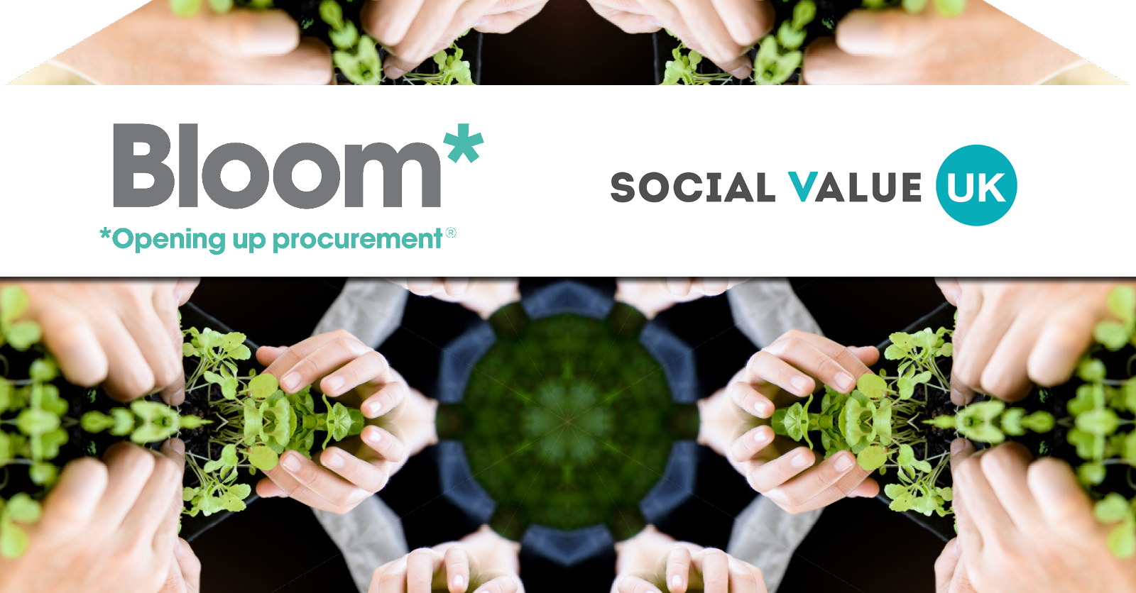 Bloom announced as Social Value UK Pioneer