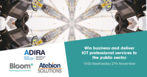 Win business and deliver ICT professional services to the public sector
