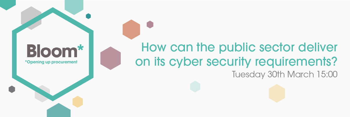 How Can the Public Sector Deliver On Its Cyber Security Requirements?
