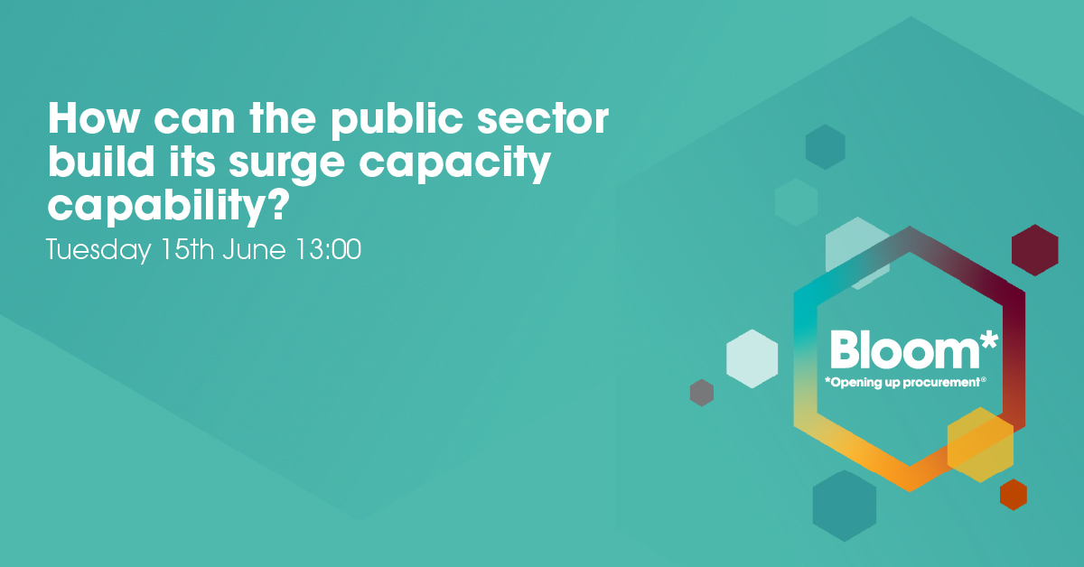 How can the public sector build its surge capacity capability?